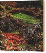 10-15-16--0823 Don't Drop The Crystal Ball Wood Print