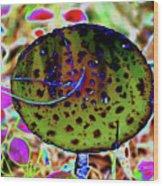 10-15-16--8400 # 2 Don't Drop The Crystal Ball Wood Print