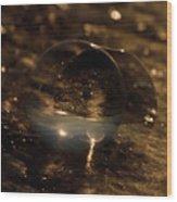 10-17-16--8634 The Moon, Don't Drop The Crystal Ball, Crystal Ball Photography Wood Print