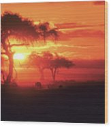 African Sunrise Wood Print