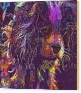 Dog Cavalier King Charles Spaniel  Wood Print