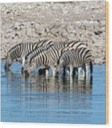 Etosha - Namibia Wood Print