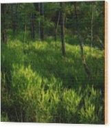 10 Wood Print