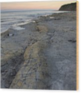 Kimmeridge Bay In Dorset Wood Print