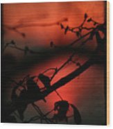 The Sunset Wood Print