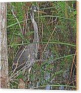 100- Great Blue Heron Wood Print
