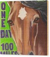 100 Mile Horse Wood Print