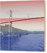 1000 Island International Bridge 3 Wood Print