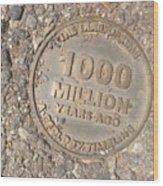 1000 Million Years Ago Wood Print