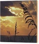 100_0103 Sunrise Wood Print