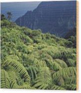 100139 Amaumau Ferns Hawaii Wood Print
