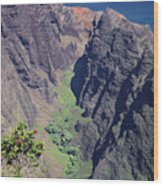100173 Awaawapuhi Vally Na Pali Coast Wood Print