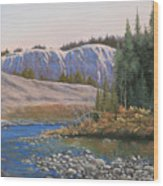 100409-1224  Rocky Creek Reflections Wood Print