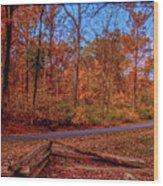 101714-127 Wood Print