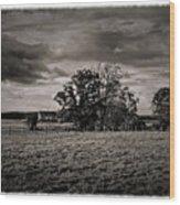 101714-380 Wood Print