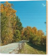 101809-4 Wood Print