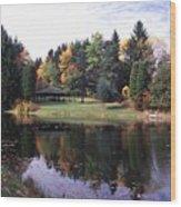 102201-23 Wood Print