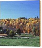 102201-64 Wood Print