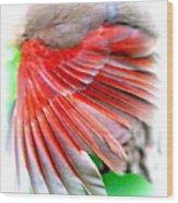 1055-001 - Northern Cardinal Wood Print