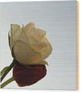 Nice Rose Wood Print
