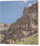 10902 Owyhee River Canyon Wood Print