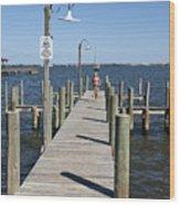 Indian River Lagoon At Eau Gallie In Florida Usa Wood Print