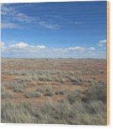 Arizona Landscape Wood Print