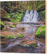 Goit Stock Waterfall Wood Print