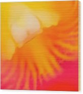 Into Cattleya Orchid  Wood Print