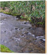 Middle Fork Of Williams River Wood Print