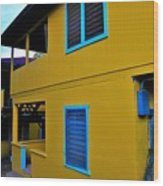Roatan/house Wood Print