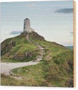 Stunning Summer Landscape Image Of Lighthouse On End Of Headland Wood Print