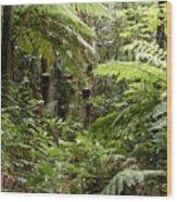 Jungle 30 Wood Print