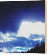 11072012007 Wood Print