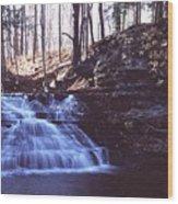 111401-4 Wood Print