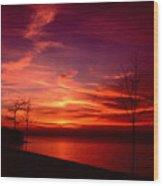 111701-25 Wood Print
