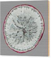 11257 The Food We Eat - Radish Wood Print