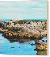 West Coast Seascape 2 Wood Print