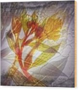 11315 Flower Abstract Series 03 #13 Wood Print