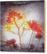 11318 Flower Abstract Series 03 #16 Wood Print