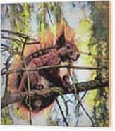 11451 Red Squirrel Sketch Wood Print