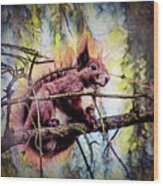 11452 Red Squirrel Sketch Square Wood Print