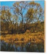 Nature Landscape Work Wood Print