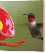 1164 - Hummingbird Wood Print