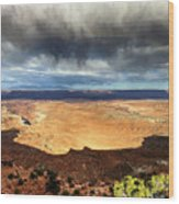 1174 Brewing Desert Storm Wood Print