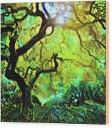 12 Abstract Japanese Maple Tree Wood Print