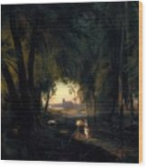 Forest Path Near Spandau Wood Print