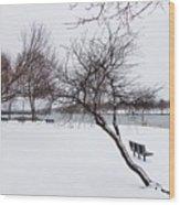 Obear Park In Winter Wood Print