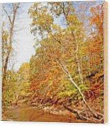 Pennsylvania Stream In Autumn Wood Print