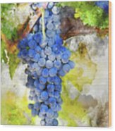 Red Grapes On The Vine Wood Print